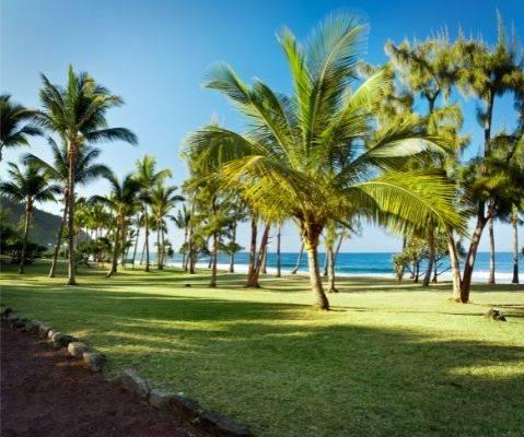 Visiter la Réunion en vacances Plage de Grande Anse