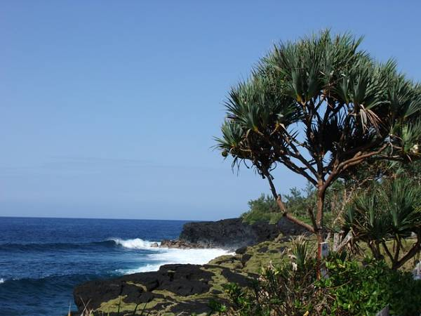 Voyage organisé à la Réunion ?